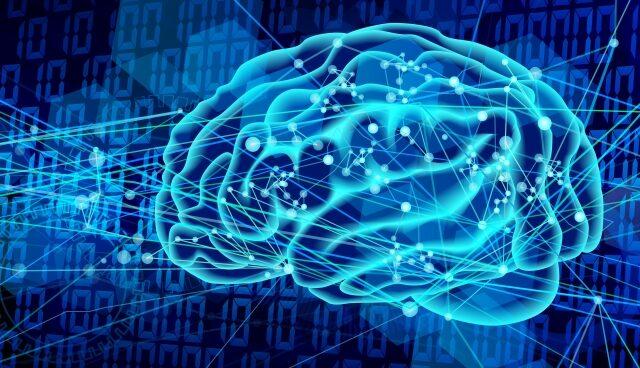 人間の脳における学習と機械学習における学習